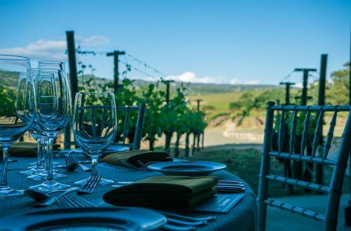wine napa valley vineyard