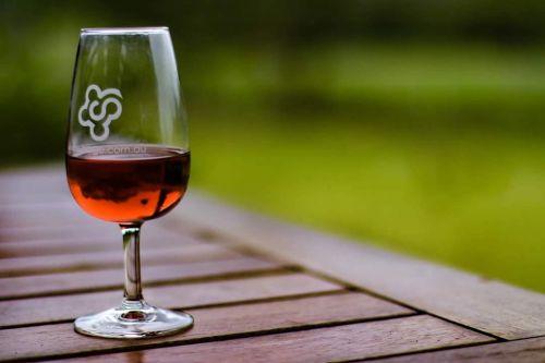 wine glass glass of wine