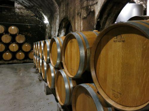 wine barrels winery