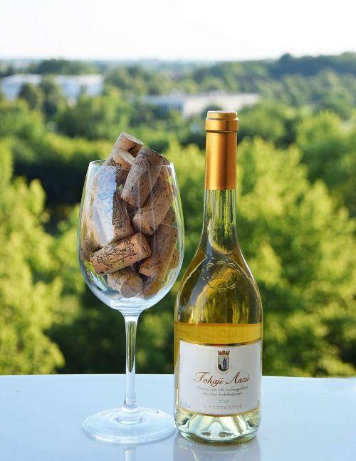 wine white wine vineyard