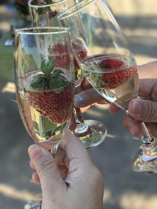 wine travel celebrate