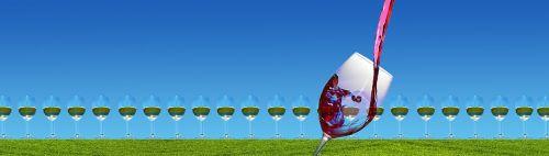 wine continental wine glass