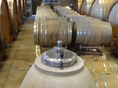 wine barrels winery