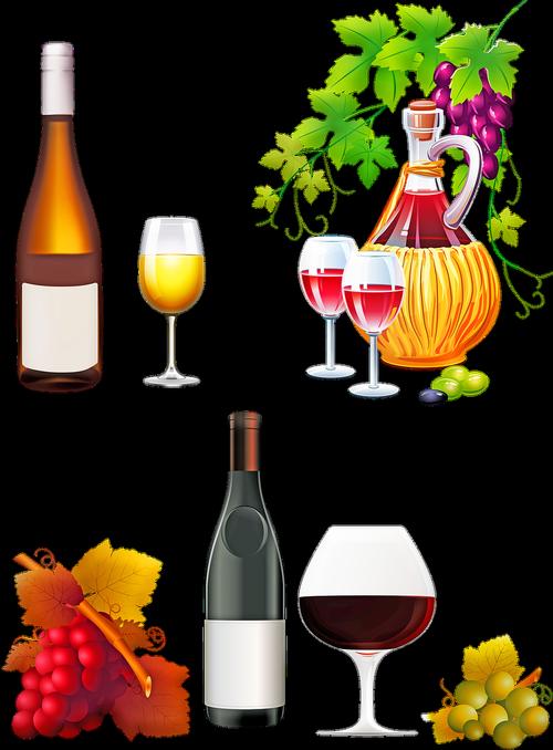 wine  grapes  vines