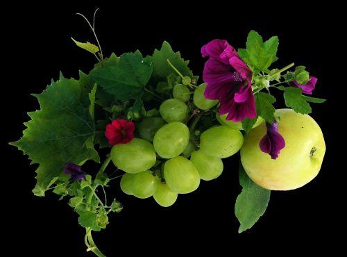 wine leaf apple