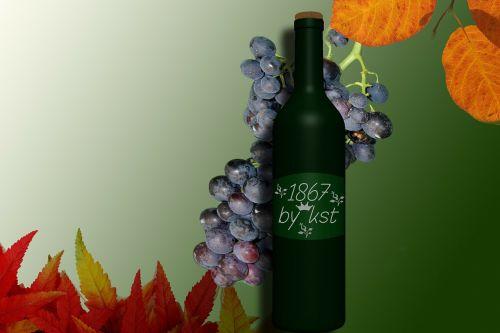 wine bottle red wine wine