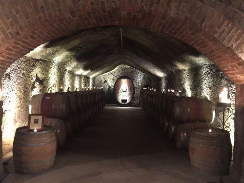 vyno urvas,senoji urvas,urvas,rūsys,vyno fabrikas