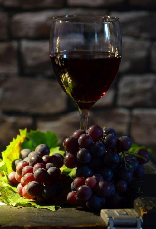 wine glass grapes wine