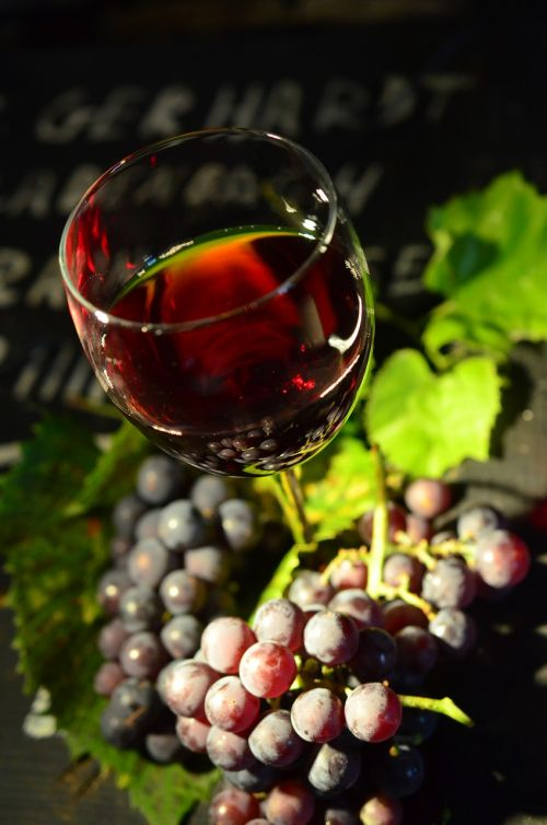 wine glass grapes red wine