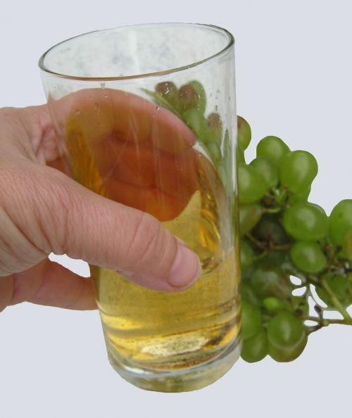 wine tasting wine wine harvest