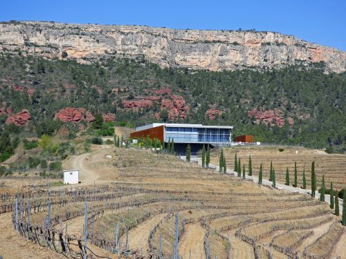 winery vineyards priorat
