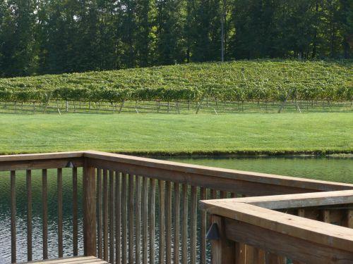 winery vineyard deck