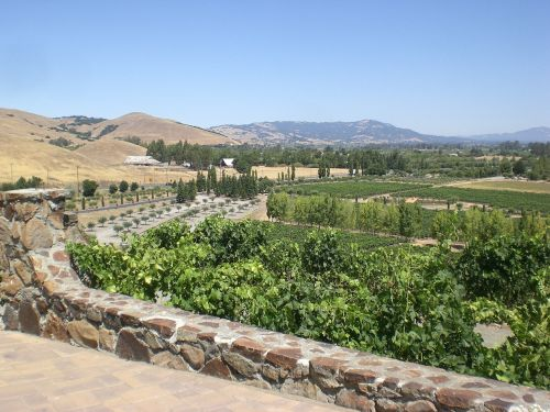 winery sonoma california