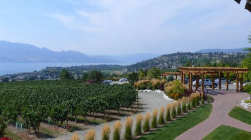 winery in bc view to the lake the path to nowhere