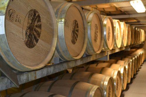 wines barrels tasting