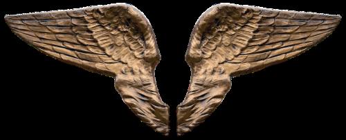 wing angel wings guardian angel