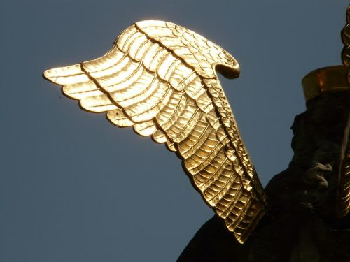 wing angel gold
