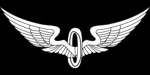 wings bird wings eagle wings