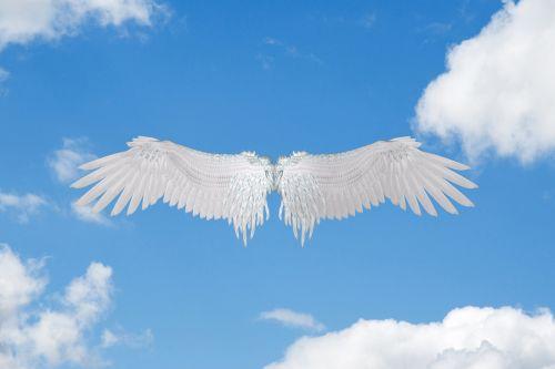 Wings In The Sky
