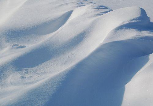žiema,fonas,sniegas,baltas fonas,šaltis,gamta,fonas