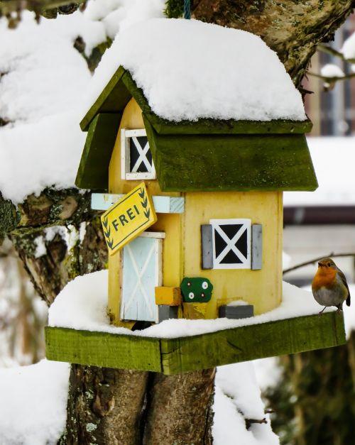 winter aviary snow