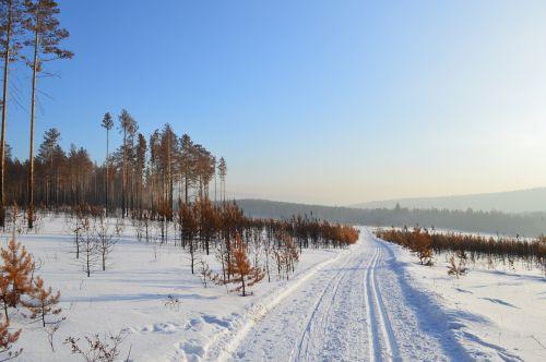 winter siberia snow
