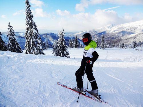 alpine skier winter skis
