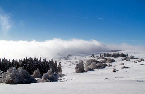 žiema,sniegas,žiemą,Hochrhoen,wasserkuppe,rhön žiema,snieguotas