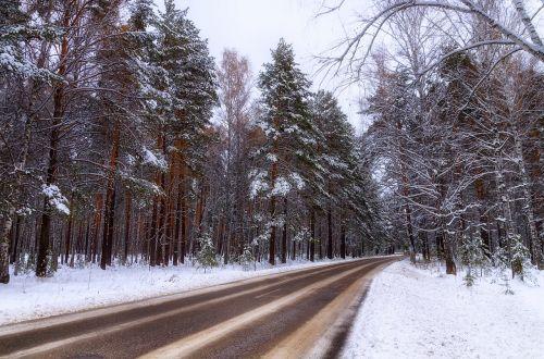 žiema,kelias,miškas,sniegas,žiemos kelias,medžiai,žiemos peizažas,automobilis,balta,šaltis,mašina,miško kelias,kelio sniegas,žiemos miškas,pušis,sniego žiemos gamta,kelias į niekur,gamta,medis,šaltas,kelias namo