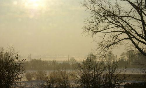 winter snow the fog