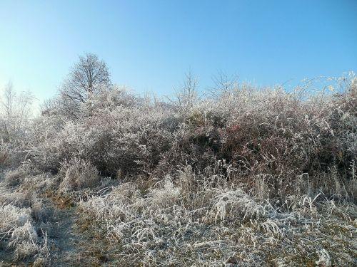 winter wintry december