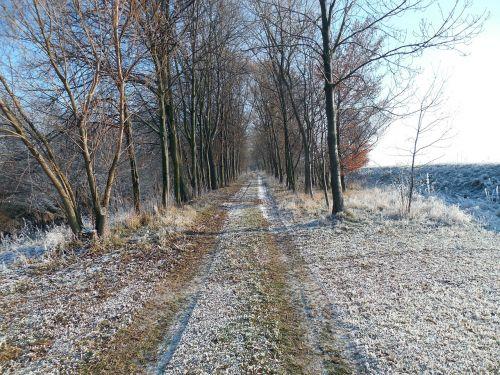 winter wintry away