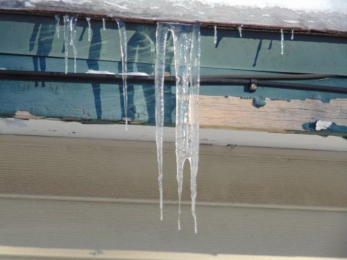 winter snow icicle