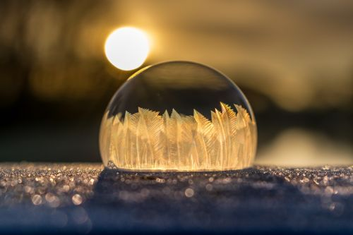 winter soap bubble frozen