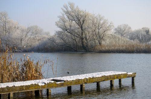 winter cold nature
