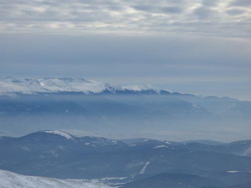 winter mountain wild