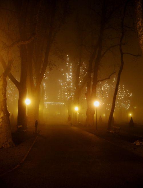 winter fog park