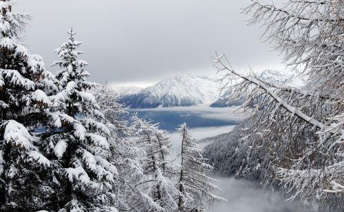winter snow christmas