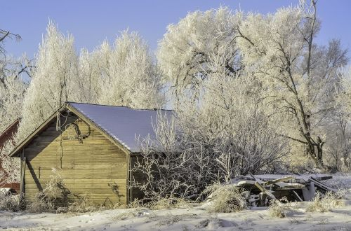 winter old shed hoarfrost