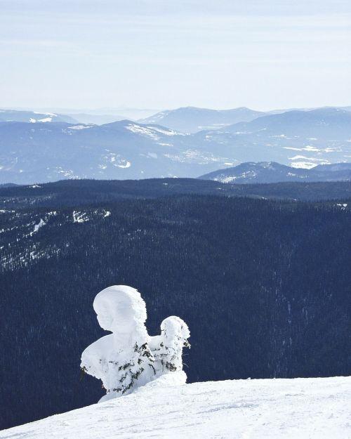 winter landscape scenery