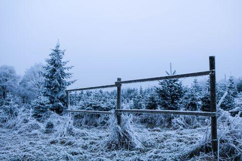 winter wintry winter cold