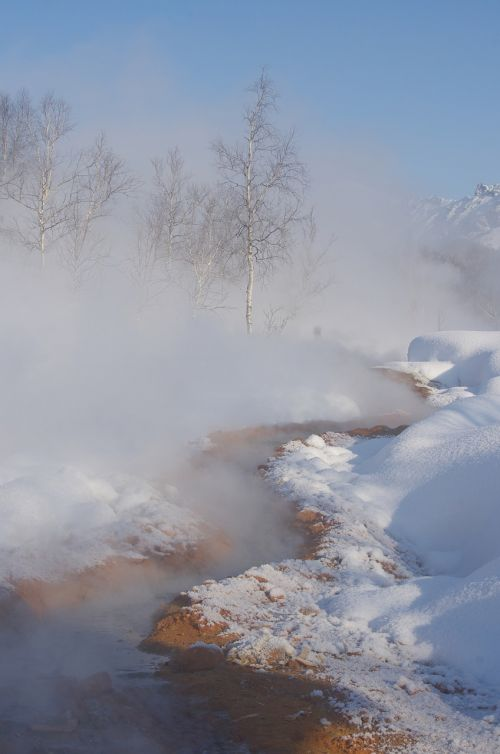 winter snow frost