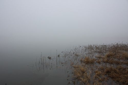winter water fog