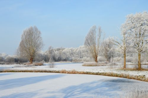winter frost ponds