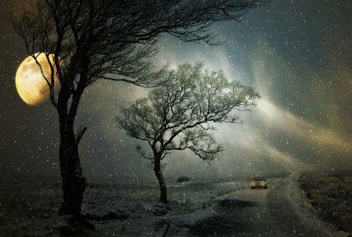 winter snowfall road