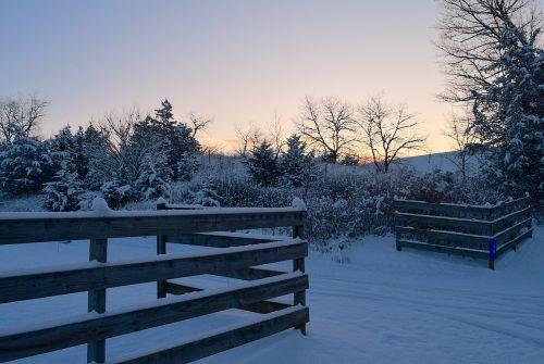 winter snow morning