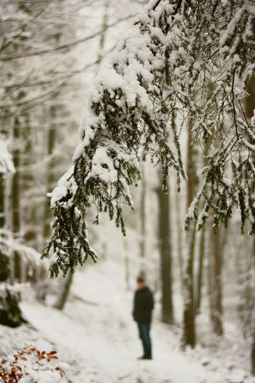 winter snow snowy