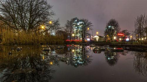 winter tree city