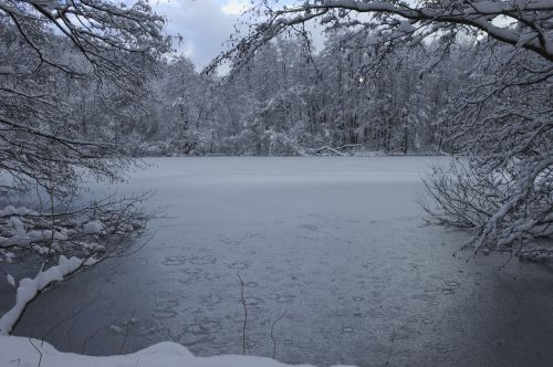 winter ice pond