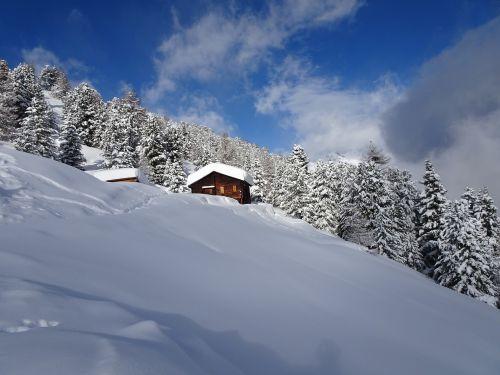 winter cold white